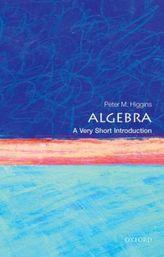 Algebra: A Very Short Introduction