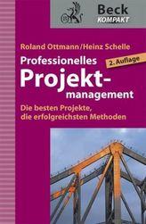 Professionelles Projektmanagement