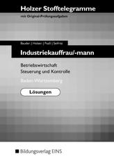 Industriekauffrau/mann, Betriebswirtschaft, Steuerung und Kontrolle, Baden-Württemberg, Lösungen