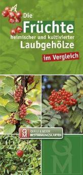 Die Früchte heimischer und kultivierter Laubgehölze im Vergleich, Leporello