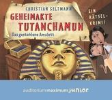 Geheimakte Tutanchamun - Das gestohlene Amulett, Audio-CD