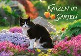 Katzen im Garten (Wandkalender 2015 DIN A2 quer)