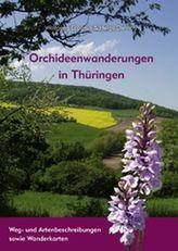 Orchideen-Wanderungen in Thüringen