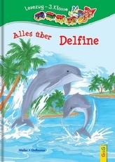 Alles über Delfine