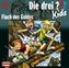 Die drei Fragezeichen-Kids - Fluch des Goldes, 1 Audio-CD