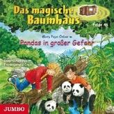 Pandas in großer Gefahr, 1 Audio-CD