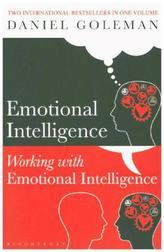 Emotional Intelligence. Working with Emotional Intelligence