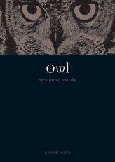 Owl. Eulen, englische Ausgabe