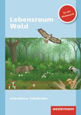 Lebensraum Wald, CD-ROM