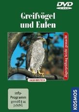 Greifvögel und Eulen, 1 DVD