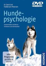 Hundepsychologie, 1 DVD