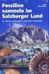 Fossilien sammeln im Salzburger Land