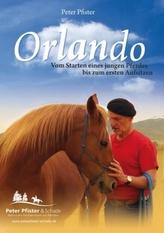 Orlando, 1 DVD