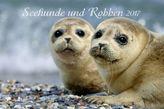 Seehunde und Robben 2017