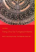 Feng Shui für Fortgeschrittene. Bd.2/1