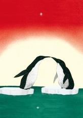 Pinguin, Postkarten