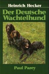 Der Deutsche Wachtelhund