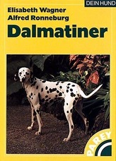 Der Dalmatiner