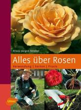 Alles über Rosen