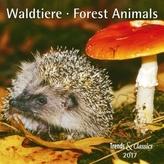 Waldtiere / Forest Animals 2017