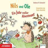 Nils und Ole, 1 Audio-CD