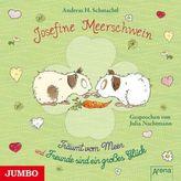 Josefine Meerschwein, 1 Audio-CD
