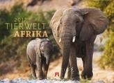 Tierwelt Afrika 2017