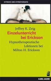 Einzelunterricht bei Erickson