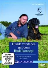 Hunde verstehen mit dem Rudelkonzept, 1 DVD