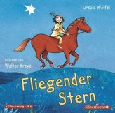 Fliegender Stern, 2 Audio-CDs