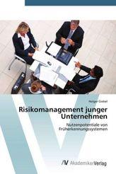 Risikomanagement junger Unternehmen