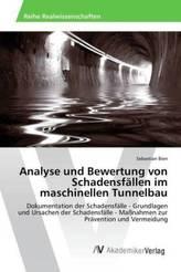 Analyse und Bewertung von Schadensfällen im maschinellen Tunnelbau