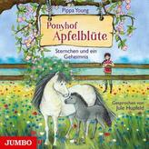 Ponyhof Apfelblüte - Sternchen und ein Geheimnis, 1 Audio-CD