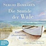 Die Stunde der Wale, 2 Audio-CDs