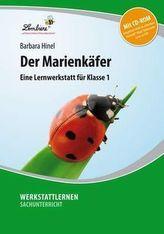 Der Marienkäfer, m. CD-ROM
