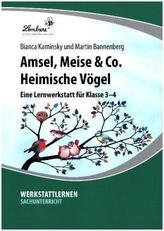 Amsel, Meise & Co. Heimische Vögel