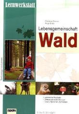 Lernwerkstatt Lebensgemeinschaft Wald
