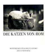Die Katzen von Rom