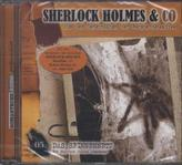Sherlock Holmes & Co - Das Spinnennetz, Audio-CD