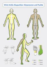Wrist-Ankle Akupunktur: Körperzonen und Punkte, Poster