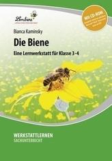 Die Biene, m. CD-ROM