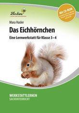 Das Eichhörnchen, m. CD-ROM