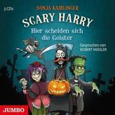 Scary Harry - Hier scheiden sich die Geister, 3 Audio-CDs