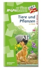 Tiere und Pflanzen: im Wald