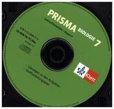 7. Schuljahr, Lehrerhinweise auf CD-ROM