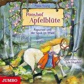 Ponyhof Apfelblüte - Rapunzel und der Spuk im Wald, 1 Audio-CD