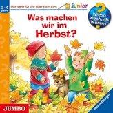 Was machen wir im Herbst?, 1 Audio-CD