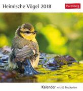 Heimische Vögel 2018