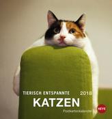 Tierisch entspannte Katzen Postkartenkalender 2018