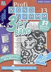 Profi-Nonogramm 3er-Band. Nr.13